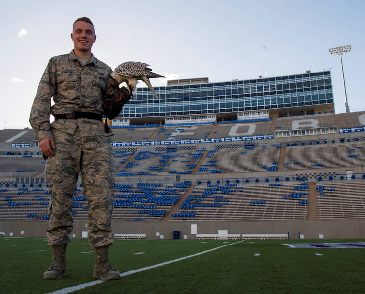 October 12, 2017 - U.S. Air Force Academy Cadet 3rd Class James Barney, a falconer at the academy falconry program, stands with his falcon Zita at the U.S. Air Force Academy, Colorado Springs, Colo. Nine cadets make up the academy's falconry team, with four chosen each year to replace the graduating seniors. New cadet falconers begin training in January under upperclassman. Their daily duties include maintaining equipment in the facility, cleaning the mews, feeding the falcons, checking each bird's health and weight and training them. (U.S. Air Force photo by Senior Airman Clayton Cupit)