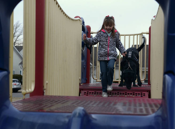 January 5, 2017 - AudreeAna Johns, age six, daughter of U.S. Army Sgt. Matthew Johns, 221st Military Police Detachment military police officer, walks her service dog, Hope, across the bridge of a playground at Joint Base Langley-Eustis, Va. Hope is trained as a seizure alert, stability and anxiety service animal and travels most places with AudreeAna, ready to notify of an impending medical need. (U.S. Air Force photo by Staff Sgt. Teresa J. Cleveland)