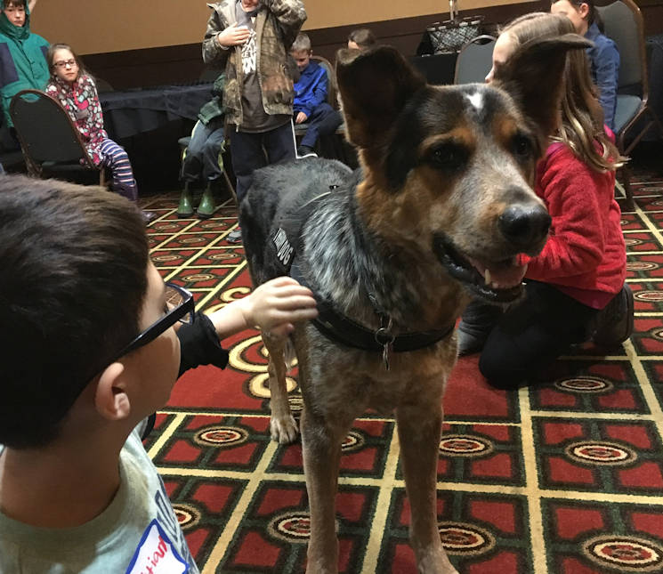 February 25, 2017 - Ted, a German Shepherd/Coonhound mix, engages in Wisconsin National Guard Service Member Support Division programs such as February Yellow Ribbon events and Youth Camp as a therapy dog. (Wisconsin National Guard courtesy photo)