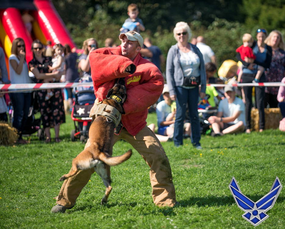 September 2, 2018 - U.S. Air Force Staff Sgt. Jonathan Elder, 100th Security Force Squadron military working dog handler, and MWD Ukkie, perform a demonstration during the Newmarket Fire and Police Fun Day in Newmarket, England. The MWDs and handlers demonstrated chest and back bites along with the six-phases of aggression. (Image created by USA Patriotism! from U.S. Air Force photo by Staff Sgt. Christine Groening)