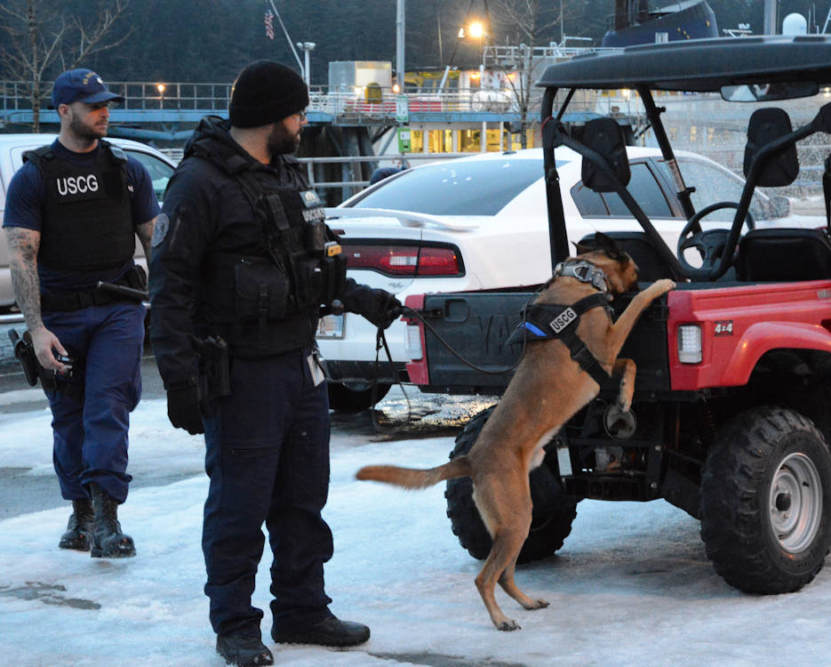 March 12, 2018 - Canine Ricky and his handler Petty Officer 1st Class Jordan Brosowsky, a member of Coast Guard Maritime Safety and Security Team San Francisco (91105), conducts a sweep of the Alaska Marine Highway System ferry terminal parking lot in Juneau, Alaska. The Coast Guard, Alaska State Troopers and Juneau Police Department partnered together during the law enforcement operation to detect and deter illegal activity on Alaska's waterways. (U.S. Coast Guard photo by Lt. Brian Dykens)