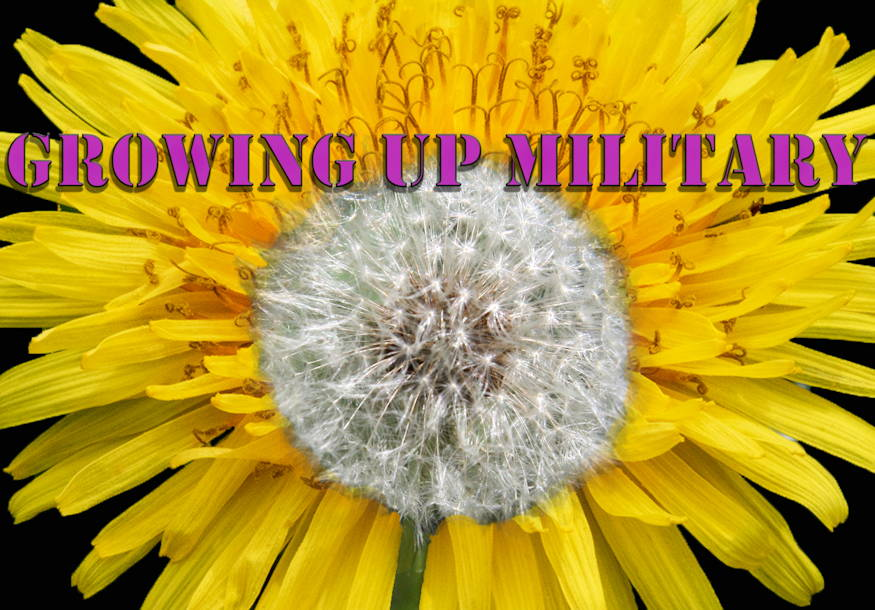 Military children all over the world, like dandelions, are able to thrive in any environment. Due to the resilient nature of the dandelion, it has become the symbol of the military child. (U.S. Air Force graphic by Senior Airman Ashley Maldonado)
