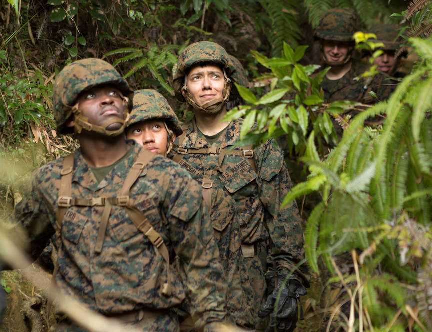 Marines with Communications Company, Headquarters Regiment, 3rd Marine Logistics Group, look up their next obstacle during the Endurance Course on Camp Gonsalves, Okinawa, Japan, Feb. 16, 2018. The E-Course is the culminating event in the Basic Jungle Skills Course, consisting of obstacles scattered through the hill-riddled jungle. BJSC is designed to teach Marines how to operate in a jungle environment. (U.S. Marine Corps photo by Lance Cpl. Jamin M. Powell)
