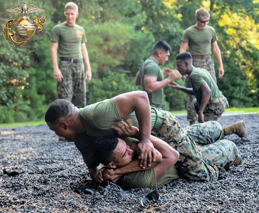 August 27, 2018 - Pfc. Cameron Roberts, administrative specialist and Lance Cpl. Isaiah Gomez, combat photographer, Marine Corps Installations East, Marine Corps Base Camp Lejeune, practice ground fighting techniques while participating in a Marine Corps Martial Arts Program (MCMAP) course at MCB Camp Lejeune. MCMAP helps create the warrior ethos by combining hand-to-hand and close quarter combat techniques with Marines' mental, moral and physical development. (Image created by USA Patriotism! from U.S. Marine Corps photo by Lance Cpl. Ashley Gomez)