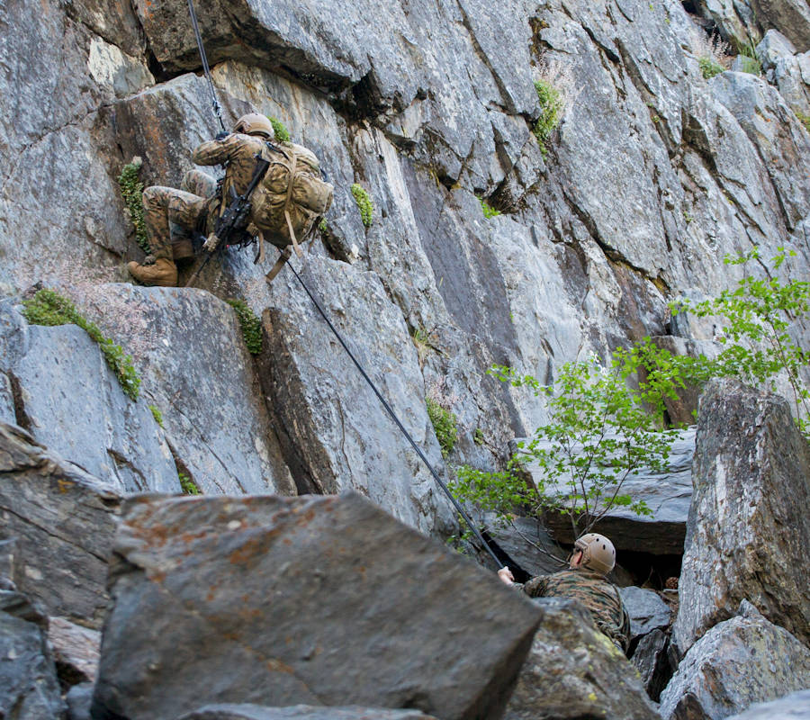 Marines with 4th Reconnaissance Battalion, 4th Marine Division, rappel down a cliffside during Mountain Exercise 3-18 at Mountain Warfare Training Center, Bridgeport, California on June 20, 2018. (Image created by USA Patriotism! from U.S. Marine Corps photo by Cpl. Dallas Johnson)