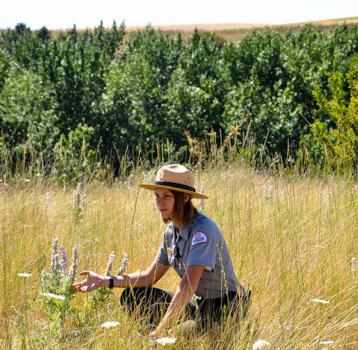 Sandy Hattan is a Park Tech and Pathways Intern with the Walla Walla District U.S. Army Corps of Engineers takes a short break during trail maintenance to enjoy the nature's beauty on July 22, 2018. She is also a student at Whitman College, studying biology. Depending on the day, Hattan might spend a couple hours in the office, working with contractors and volunteers, however, rangers try to stay out in the field, as most of their duties have to do with taking care of the parks and making sure people follow the rules. (U.S. Army Corps of Engineers photo by Hannah Mitchel)