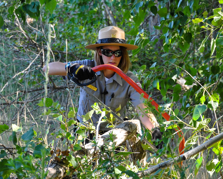 Sandy Hattan is a Park Tech and Pathways Intern with the Walla Walla District U.S. Army Corps of Engineers trims back tree branches during trail maintenance on July 22, 2018. (U.S. Army Corps of Engineers photo by Hannah Mitchel)