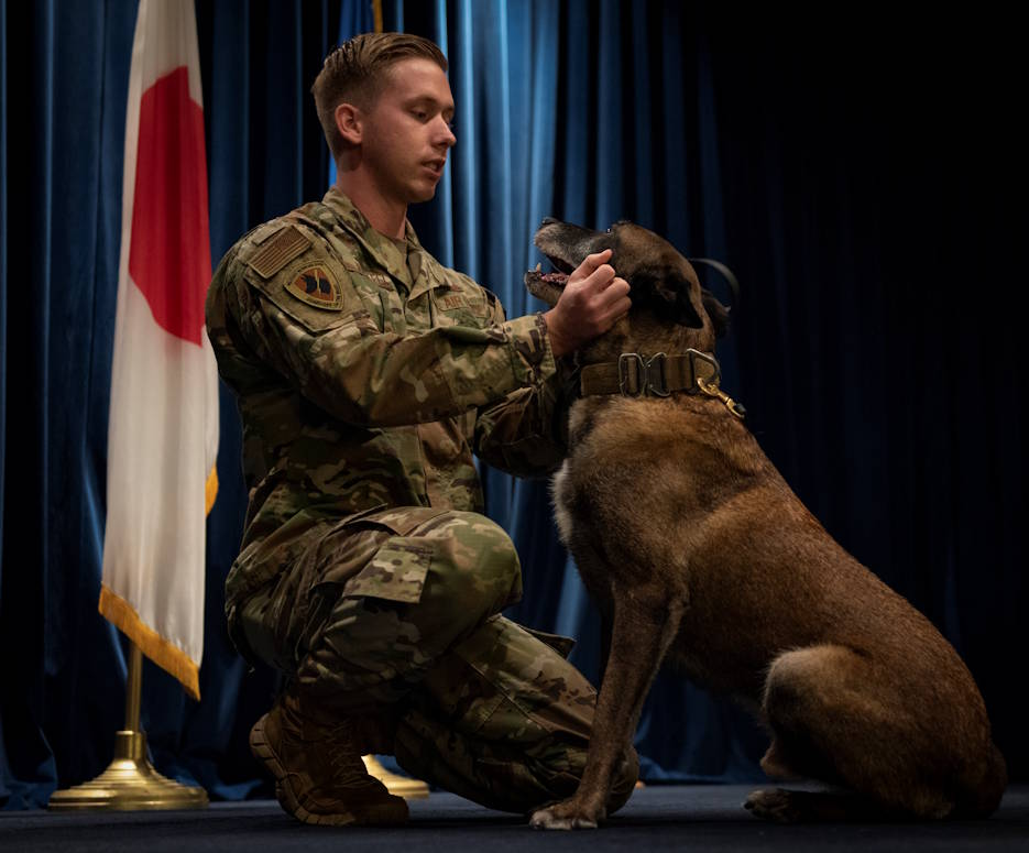 October 17, 2019 - Staff Sgt. Cody Nickell, 374th Security Forces Squadron military working dog handler, shares a moment with his teammate Topa during Topa's retirement ceremony at Yokota Air Base, Japan. With Topa beginning his career as a MWD in 2012, he has defended Yokota alongside his handlers for seven years before being forced to medically retire. After a life of service, Topa has been adopted by his handler, Nickell and his family, to live out the rest of his days in peace. (U.S. Air Force photo by Senior Airman Matthew Gilmore)