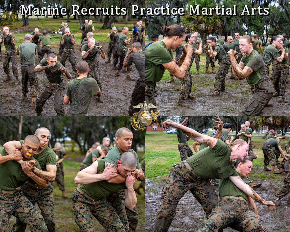 December 30, 2019 - Recruits with India Company, 3rd Recruit Training Battalion, practice during a Marine Corps Martial Arts Program training session at Marine Corps Recruit Depot Parris Island, S.C. They practice included basic fighting stances; escaping choke holds; and, escaping from a hold and tossing the other recruit to the ground. (Image created by USA Patriotism! from Marine Corps Photo by Gunnery Sgt. Tyler Hlavac)