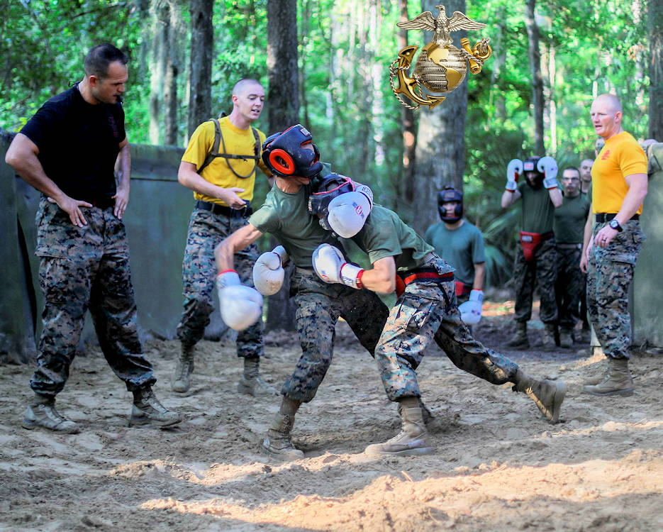 August 8, 2019 - Recruits with Hotel Company, 2nd Recruit Training Battalion, showcase their knowledge of Marine Corps Martial Arts during body sparring on Marine Corps Recruit Depot Parris Island, South Carolina. (Image created by USA Patriotism! from U.S. Marine Corps photo by Pfc. Godfrey Ampong)