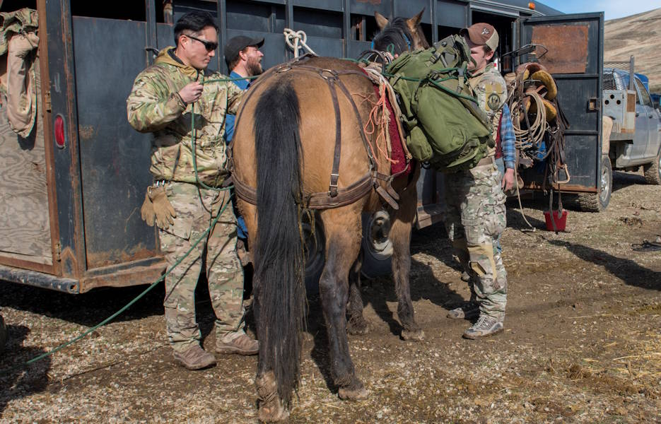Special warfare tactical air control party Airmen from the 124th Air Support Operations Squadron participate in pack animal training on February 9, 2020 in Emmett, Idaho. Pack animals, including horses, donkeys and mules, are utilized during missions where normal methods of transportation are restricted. (U.S. Air National Guard photo by Airman 1st Class Taylor Walker)