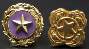 Gold Star Pins