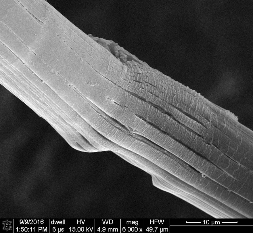 Army researchers analyze high-performance fibers with a scanning electron microscope. (U.S. Army courtesy photo)
