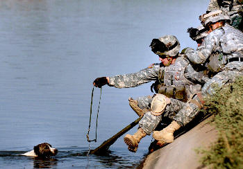 U.S. Army soldiers from the 33rd Cavalry Regiment, 3rd Brigade Combat Team, 101st Airborne Division rescue a dog from a canal while conducting a  reconnaissance mission near Forward Operating Base Heider, Iraq, Aug. 16, 2006.