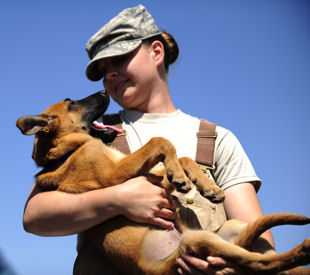 Air Force Staff Sgt. Christa Quam holds her puppy, which will enter the military working dog program in a year at Lackland Air Force Base, Texas. The dogs are enrolled in a 60- to 90-day training program, where they are trained in explosive and drug detection, deterrence and handler protection.