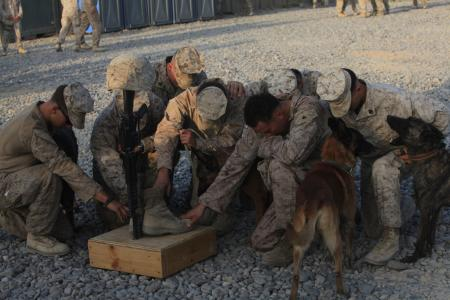 Fellow military police dog handlers pay tribute to their fallen brother, Cpl. Max W. Donahue during a memorial service at Forward Operating Base Delhi, Helmand province, Afghanistan, Aug. 21, 2010. Donahue was killed Aug. 7, 2010, while conducting combat operations in Helmand province, Afghanistan.