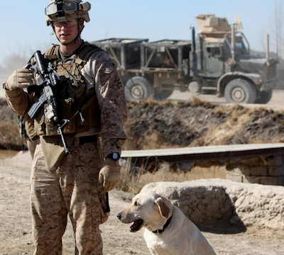 U.S. Marine Cpl. Ross T. Gundlach, a dog handler with 2nd Battalion, 6th Marine Regiment and his trusted dog Casey pose for a photo after searching a local village here, Jan. 12, 2012. Always together while on patrol, Gundlach, a 24-year-old native of Madison, Wis., and Casey, an improvised device detection dog, search for IEDs, IED components and weapons caches. Gundlach is one of 34 dog handlers currently serving with 2/6, and only one of two handlers with a non-infantry background. Photo by USMC Cpl. Johnny Merkley