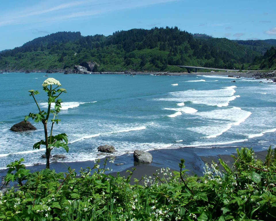 A scenic view of False Klamath Cove from Yurok Loop Trail located in the North Coast region of California, mostly in Del Norte Coast Redwoods State Park apart from the southern tip ... which is part of Redwood National Park.(Image created by USA Patriotism! from U.S. National Park Service photo.)
